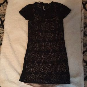 Ann Taylor Loft Lace Dress
